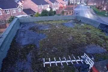 before image of flat roof covered in moss